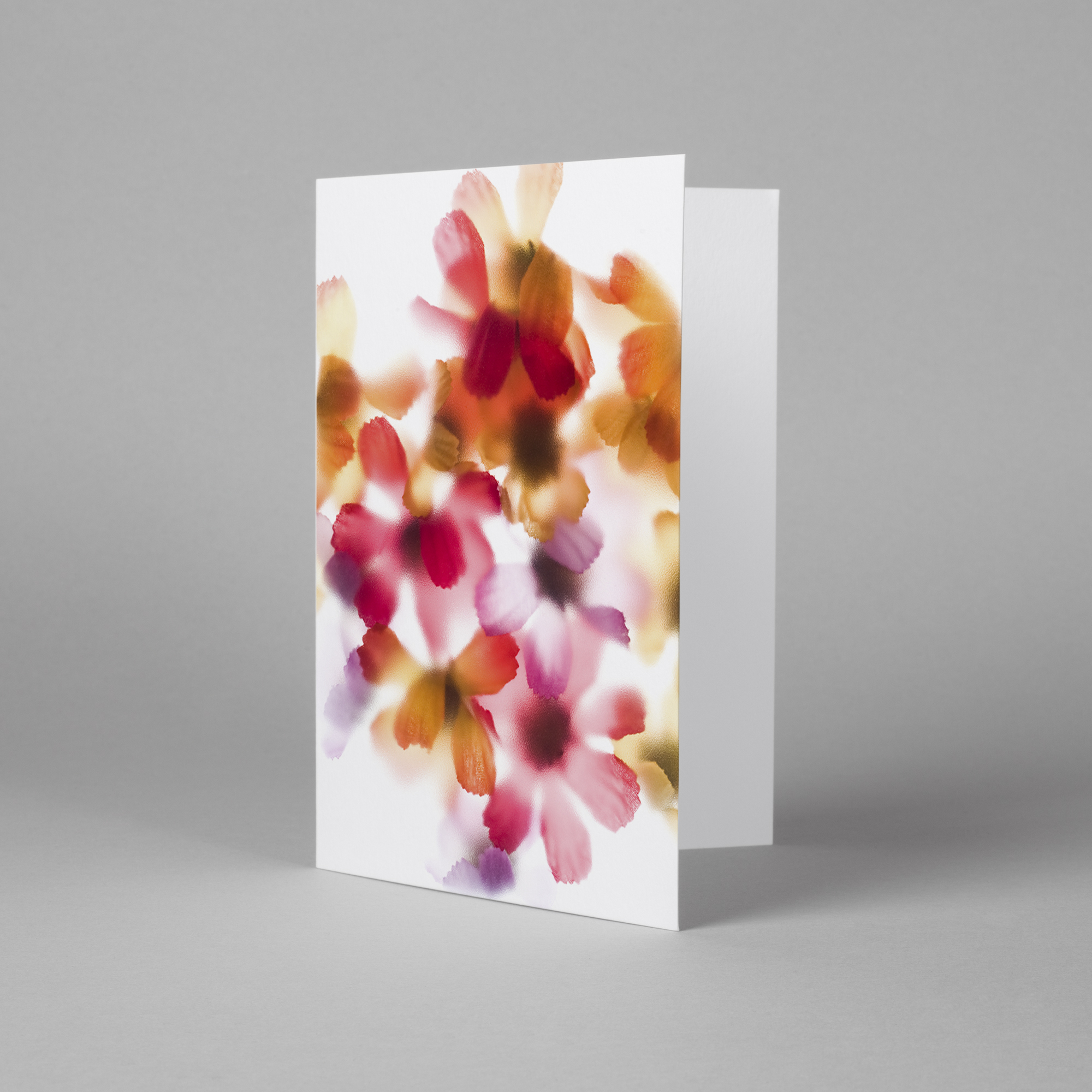 Flora Collection greeting cards
